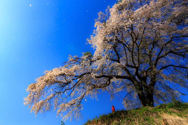 5D3_5407_CameraRAW_2048.jpg