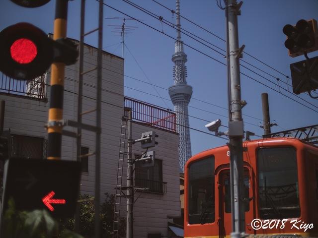 E5052212_CameraRAW_2048_signed.jpg
