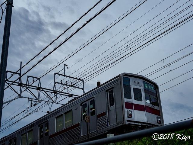 E5062530_CameraRAW_2048_signed.jpg