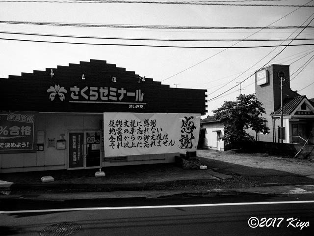 E5141511_CameraRAW_2048_signed.jpg