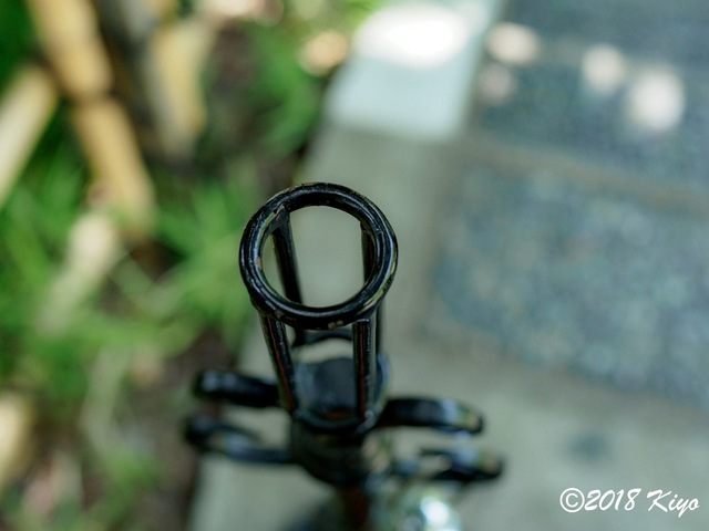E6093282_CameraRAW_2048_signed.jpg