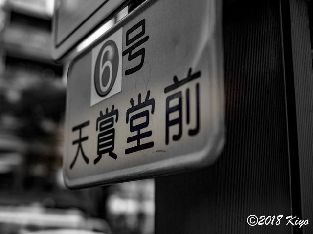 E6163709_CameraRAW_2048_signed.jpg