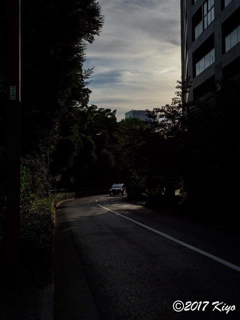 E7157032_CameraRAW_2048_signed.jpg