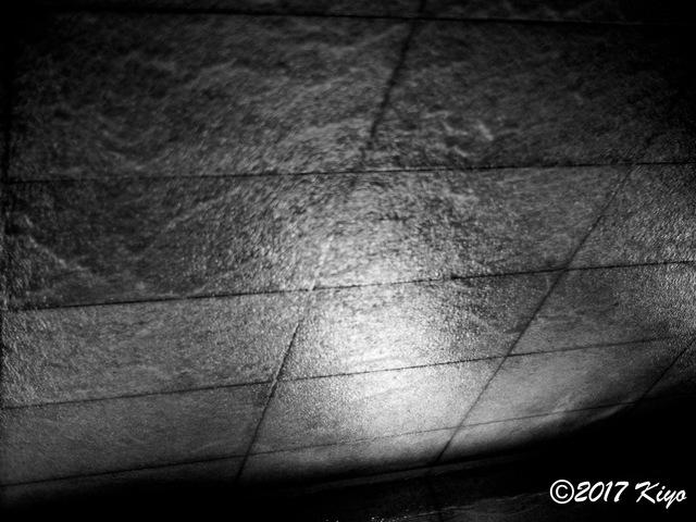 E7308564_CameraRAW_2048_signed.jpg