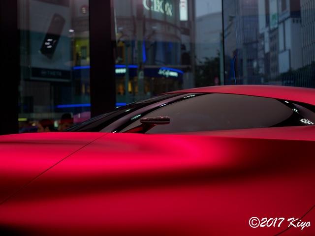 E8150522_CameraRAW_2048_signed.jpg