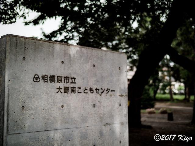 E9031145_CameraRAW_2048_signed.jpg