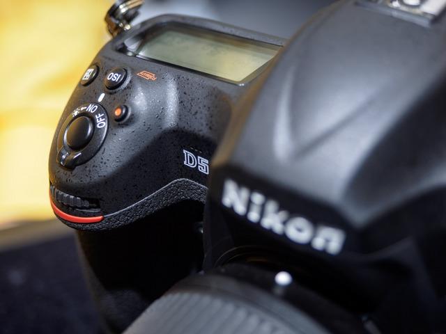 M2268204_CameraRAW_2048.jpg