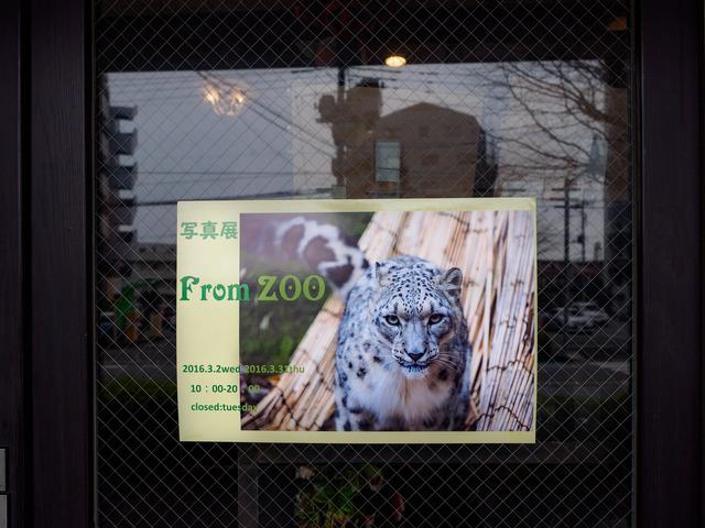 M3199887_CameraRAW_2048.jpg